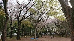 石神井公園-2.JPG