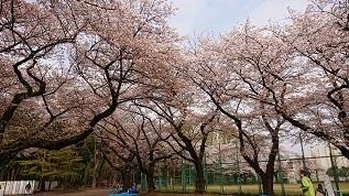 石神井公園-5.JPG